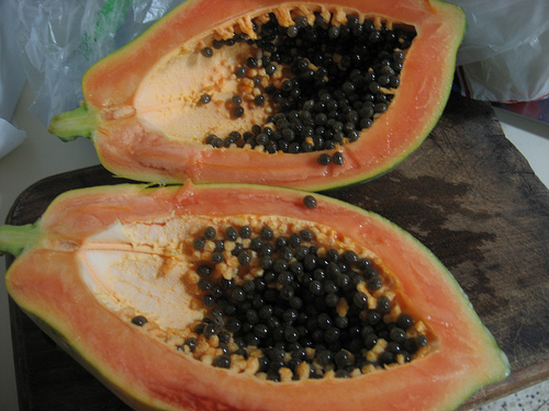 La papaya como sustitutivo al torno