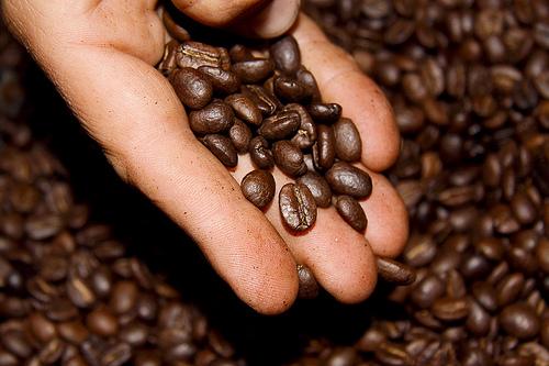 Para evitar el mal aliento, tome café