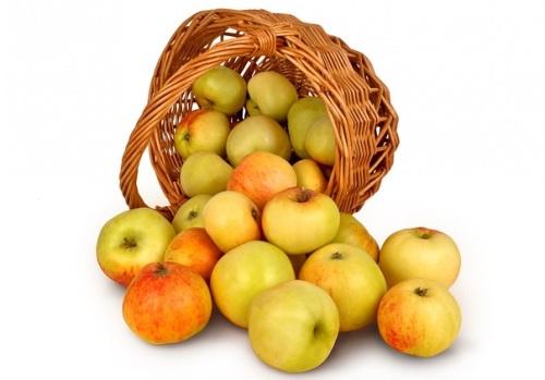 Manzanas, aliadas de la salud oral