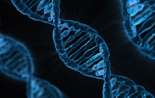 genética y caries dentales