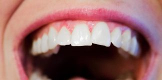Se crearán dientes a partir de las células de la encía