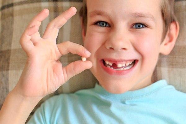 Aparte de aprender a lavarse los dientes y crearse un hábito de limpieza bucodental, con el cepillado al menos dos veces al día (después del desayuno y antes de ir a dormir), los niños deben saber algunas curiosidades sobre los dientes.