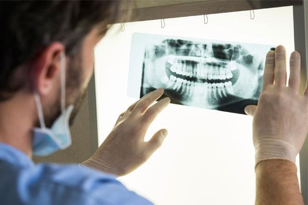 seguro dental servicios