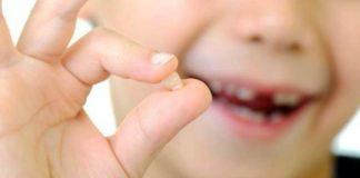 raton perez dientes de leche