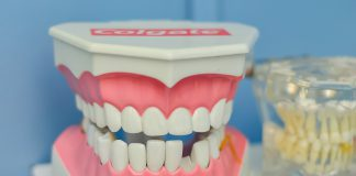 Los odontólogos del ICOEV desmienten varios mitos dentales